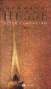 Copertina dell'audiolibro Peter Camenzind