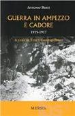 Copertina Guerra in Ampezzo e Cadore 1915-1917
