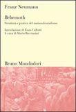 Copertina dell'audiolibro BEHEMOTH: Struttura e pratica del nazionalsocialismo di NEUMANN, Franz