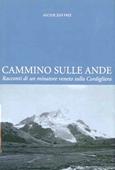 Copertina dell'audiolibro Cammino sulle Ande