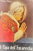 Copertina dell'audiolibro Il Papa dell'eucarestia – Vita del Papa Pio X di FELICI, Icilio