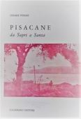 Copertina dell'audiolibro Pisacane: da Sapri a Sanza