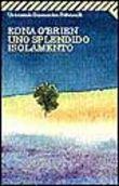 Copertina dell'audiolibro Uno splendido isolamento di O'BRIEN, Edna
