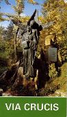 Copertina dell'audiolibro Via Crucis – Santuario Grotta di Lourdes Beato Claudio Chiampo (VI) di CONVENTO S.M. DELLA PIEVE  - CHIAMPO