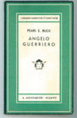 Copertina Angelo guerriero