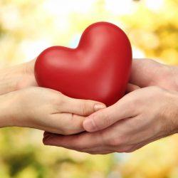 Un cuore tra le mani